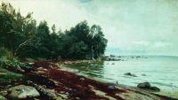 Залив. 1878