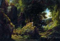 Скалистый вид в лесу