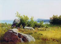 Летние травы. 1890-е