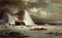 Скованное льдами судно