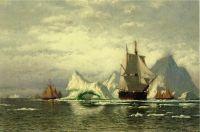 Арктическое китобойное судно уходит меж айсбергами в порт приписки