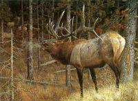 Мечта охотников