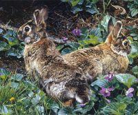 Фиолетовые тропки и одичавшие американские кролики