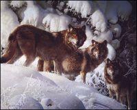 Охотники-стайеры