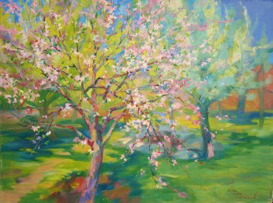 Яблонька цветёт.