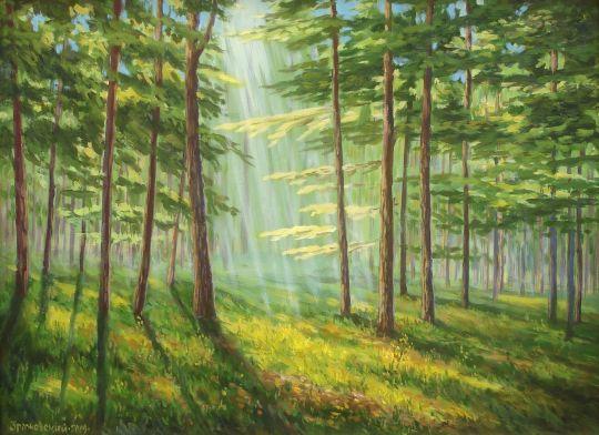 Солнечный лес