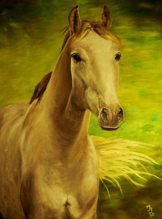 Лошадь №5