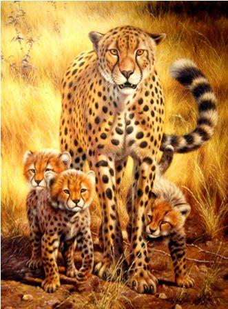 Гепарды.худ.Тина Бруно