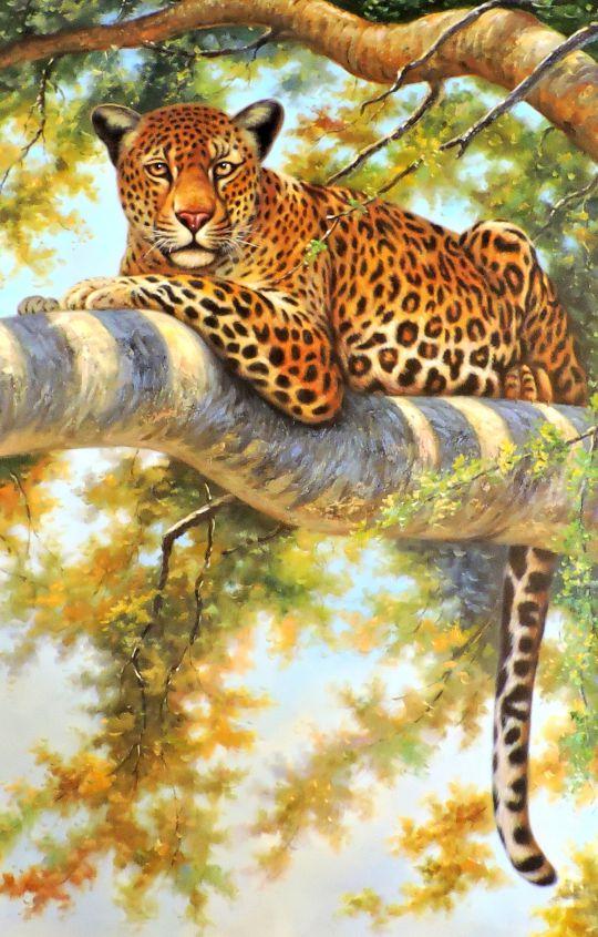 Леопард.худ.Августо Бруно