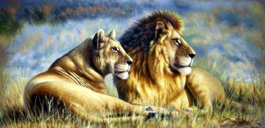 Львы.худ.Августо Бруно