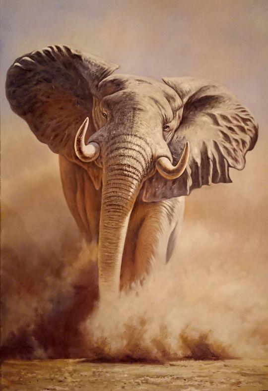 Слон.худ.А.Бруно