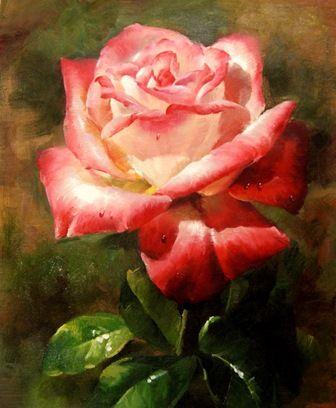 Роза.худ.С.Минаев