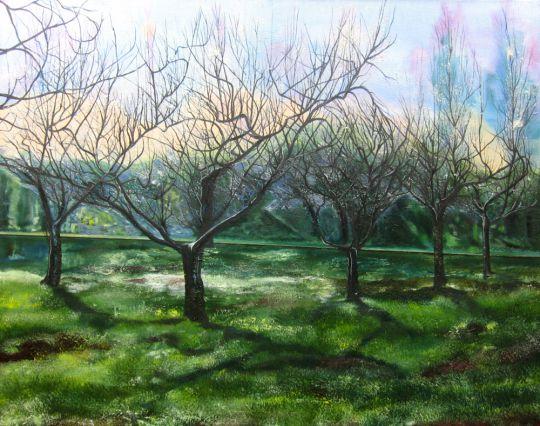 Деревья весной
