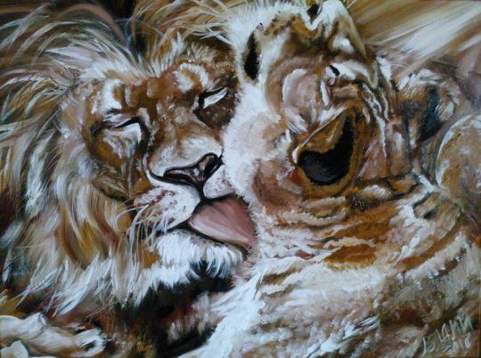 Львы.Преданность