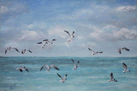 Чайки над лагуной