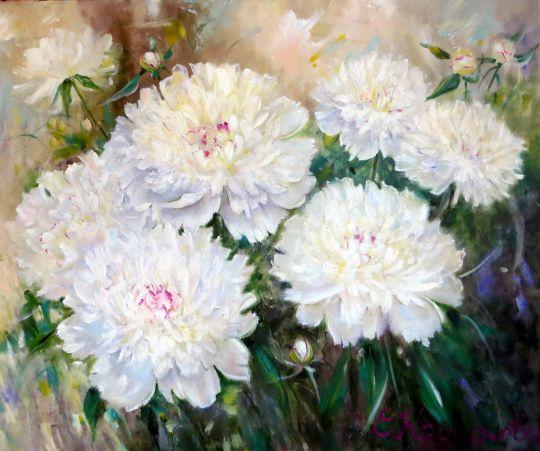 Белые пионы. Цветение.