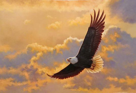 Парящий орел.худ.А.Бруно