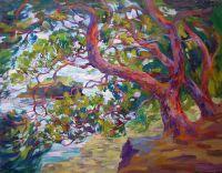 Весенний ветер.Крымские сосны.
