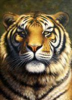 Тигр.худ.Августо Бруно