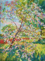 Молодая яблонька в цвету.