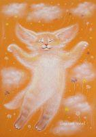 Оранжевое счастье