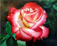 Прекрасная роза.худ.С.Минаев