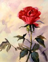 Роза.худ.Т.Бруно