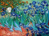 Ирисы.копия Ван Гога.худ.А.Бруно