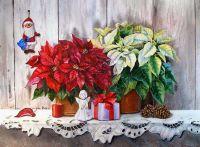 Рождественский натюрморт