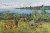 Летом на озере