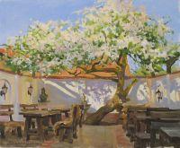 Завтрак у старой яблони
