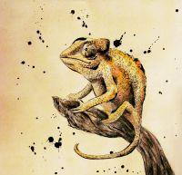 Хамелеон на ветке