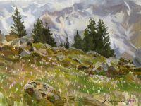 На северном склоне весна