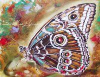 Бабочка цвета махагон