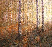 Осеннее солнце в березовом лесу