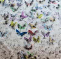Такие свободные бабочки