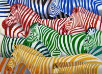 Зебры. Разноцветный монохром