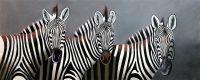Зебры. Монохром N1