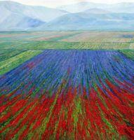 Разноцветные поля на фоне гор