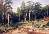 Сосновый бор.Мачтовый лес в Вятской губернии(копия Шишкина)