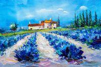 Лавандовые поля. Синий