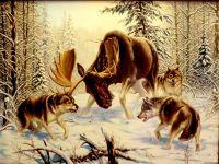 Охота стаи (копия Данчуровой)