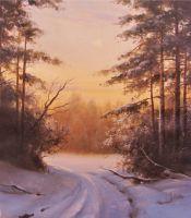 Укатанная дорога