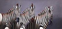 Зебры. Монохром N3