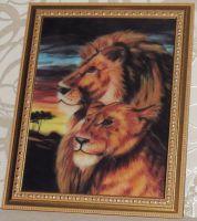 Лев и львица-короли джунглей