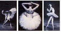 Изящный мир балета. Триптих