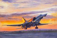 Самолет Ту-22 М3. Уходя в закат