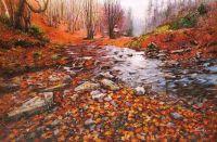 Ручей в лесу. Бархатная осень