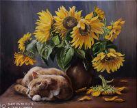 Подсолнечный кот