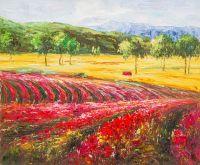 Цветущие поля Прованса
